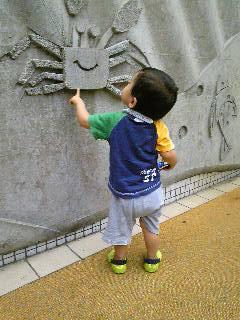 須磨水族館Image8881.jpg